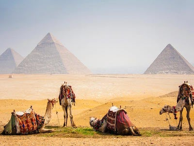 Discover flights from {var.firstOriginCityName} to Cairo with Aeroflot